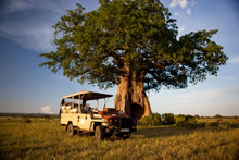 exclusive safaris in tanzania - Ruaha National Park