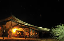 kwihala camp - at night